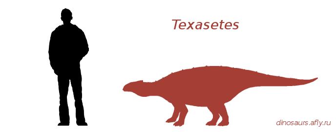 Texasetes
