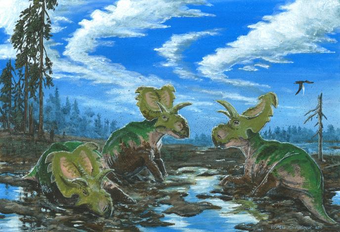 Медузацератопсы