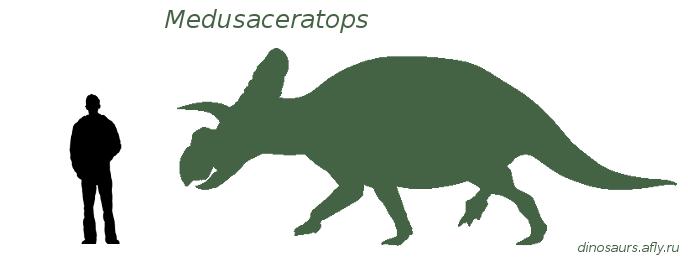 Медузацератопс