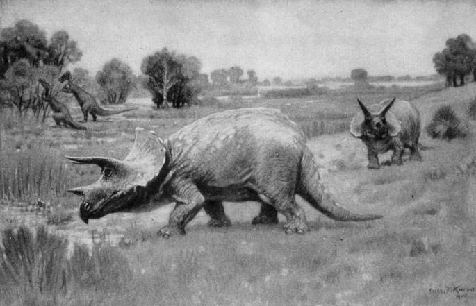 Виды и история обнаружения