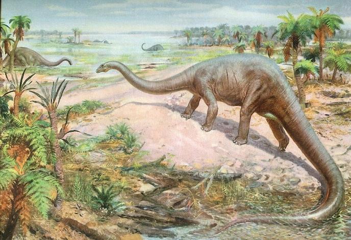 Диплодок � diplodocus �ей�мозав� seismosaurus �о�о
