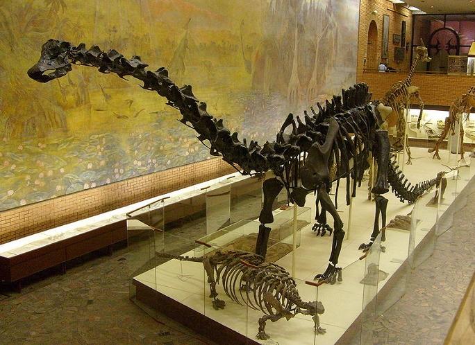 Динозавры виды и названия картинки