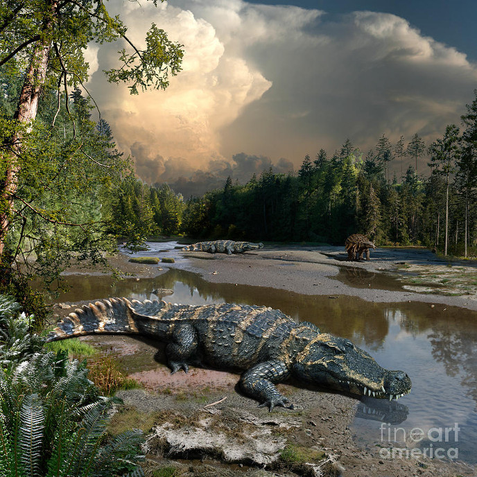 http://dinosaurs.afly.ru/ii/kr/deinosuchus-3-m.jpg