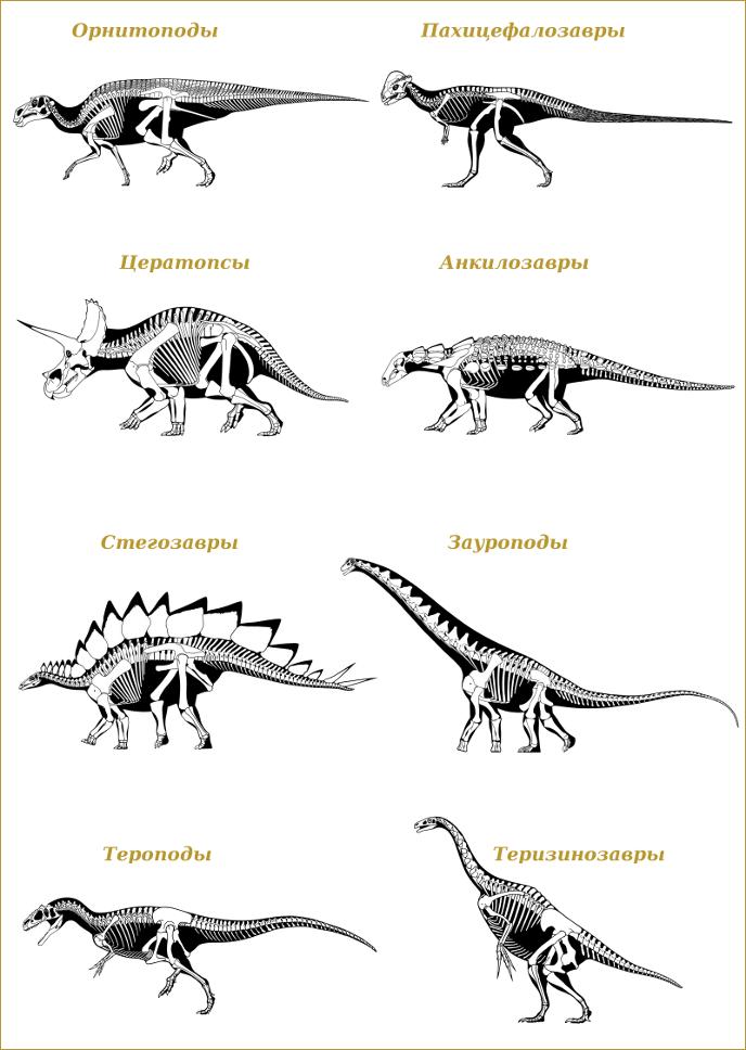 Отряды динозавров