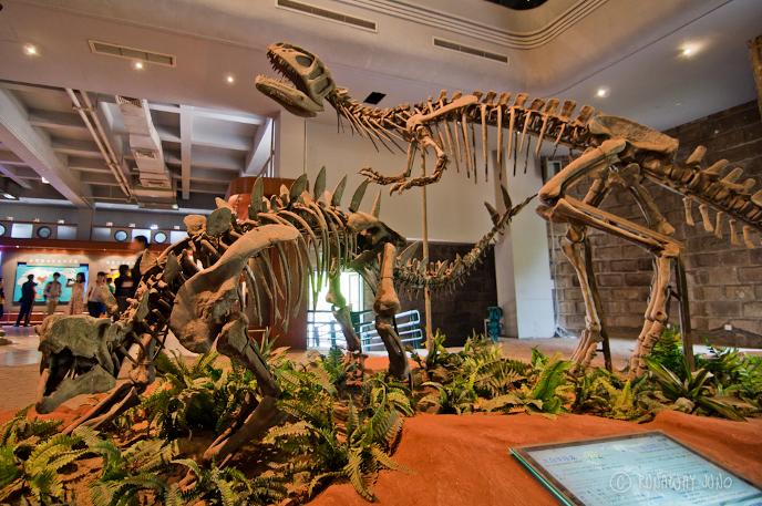 Хуаянозавр и янхуанозавр