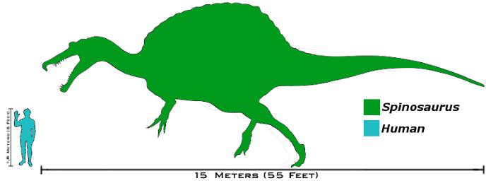 Размеры спинозавра