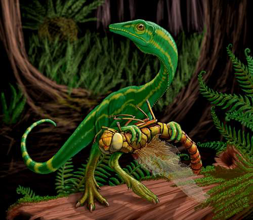 http://dinosaurs.afly.ru/ii/t/compsognathus.jpg