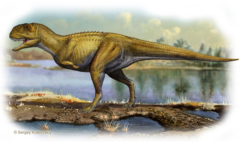 allosauroidea team vs abelisauridae team
