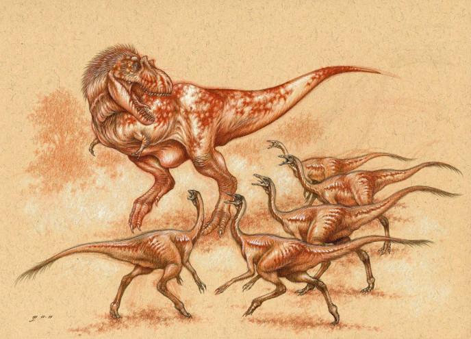 Орнитомимы и альбертозавр