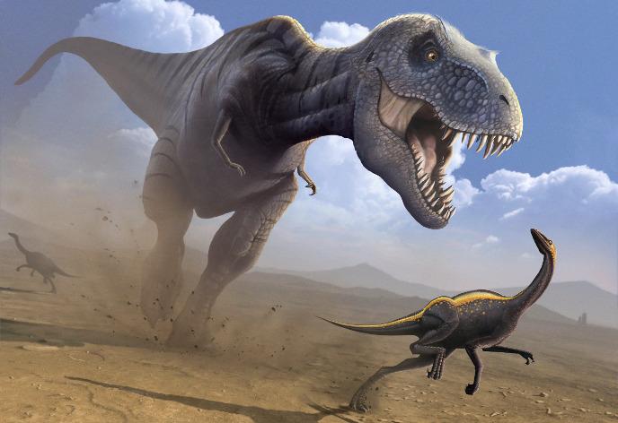 Орнитомим и тираннозавр