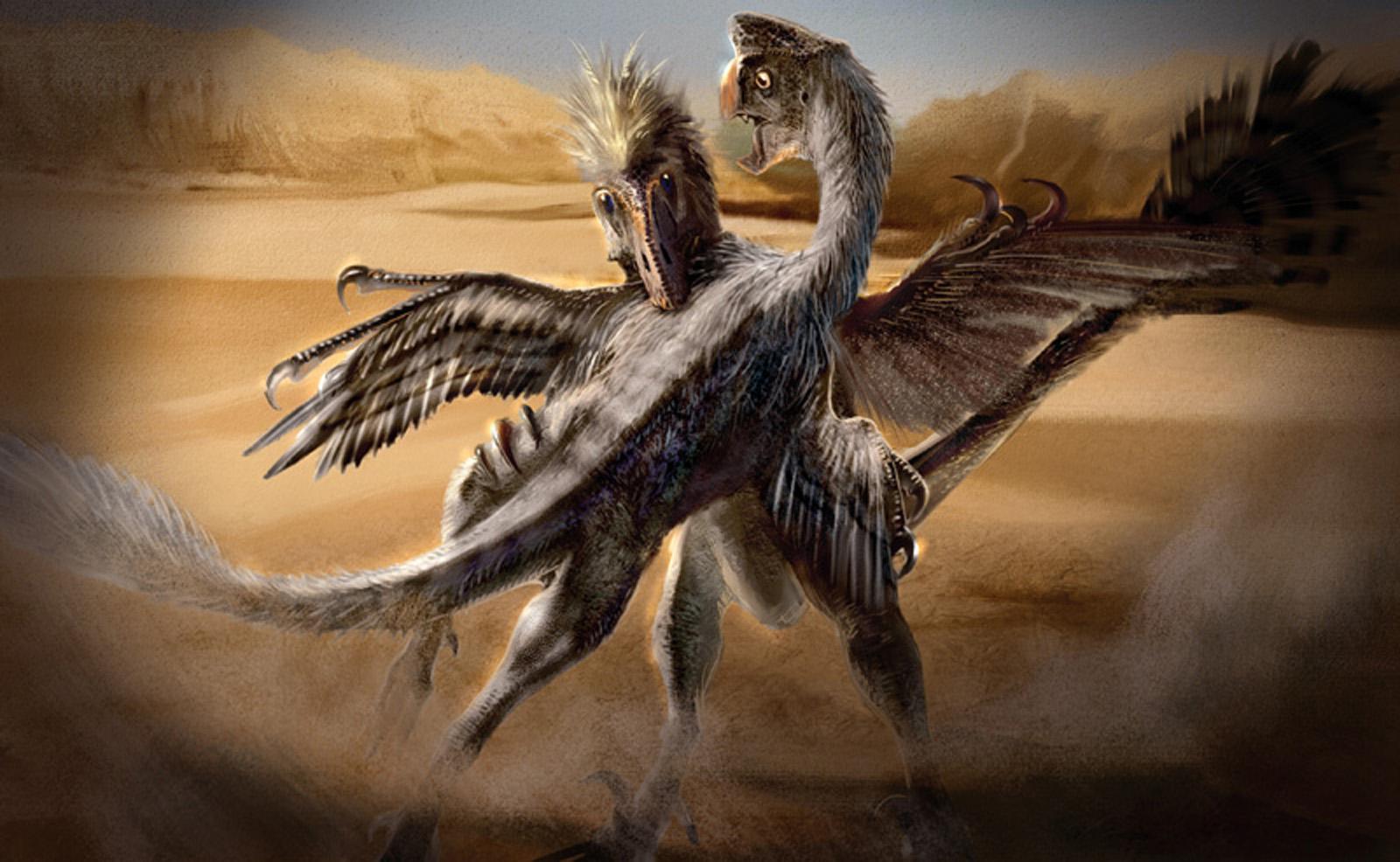 http://dinosaurs.afly.ru/ii/t/oviraptor-i-velociraptor.jpg