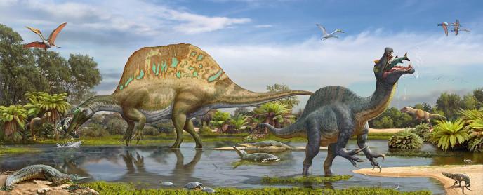 Спинозавр и сиджильмасазавр