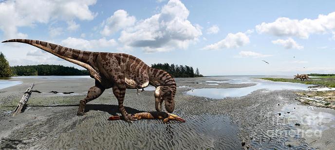 Тираннозавр ест мозазавра