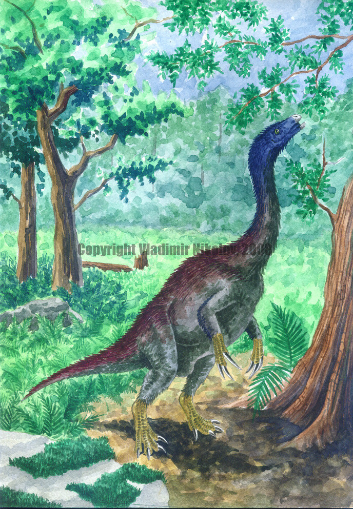 Nothronychus mckinleyi