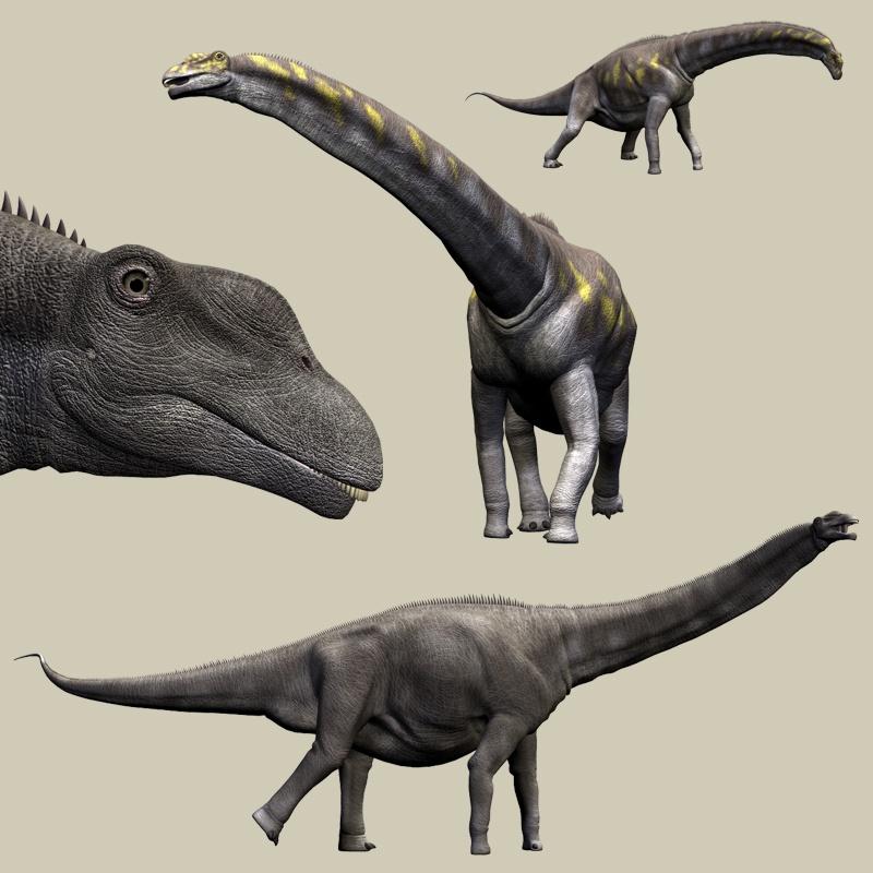 http://dinosaurs.afly.ru/ii/z/argentinosaurus-2.jpg