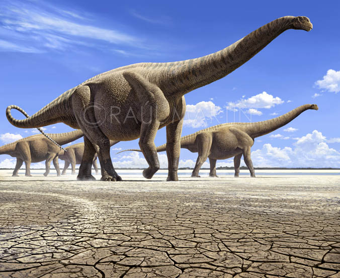 http://dinosaurs.afly.ru/ii/z/argentinosaurus-3.jpg