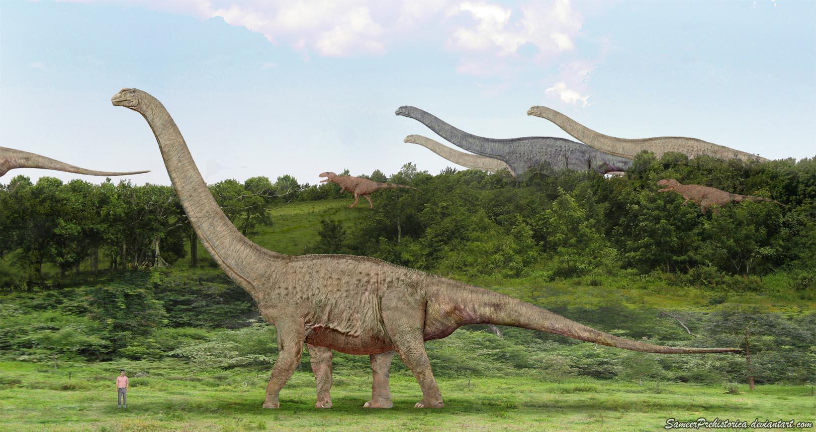 Скачать книгу про динозавров с рисунками