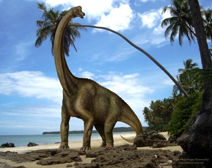 Фотография динозавра