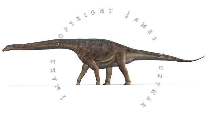 Patagotitan mayorum